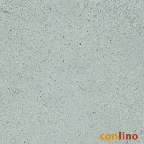Muschel CP 146